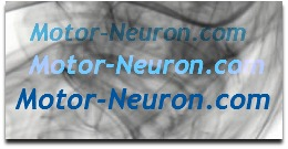 motor-neuron.com badge link